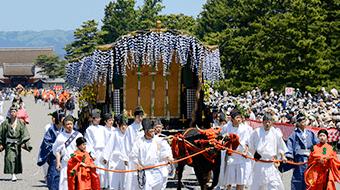 Sharing Kyoto
